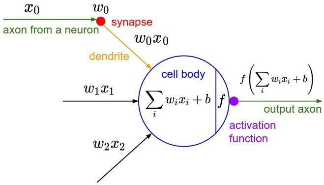 Input signals combines and goes through an activation function in a neuron of a neural network.